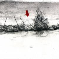 Du plomb dans le corps/Des fleurs dans la tête 4, graphite et acrylique sur papier, approx. 36 x 36cm, 2006