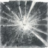 Du plomb dans le corps/Des fleurs dans la tête 7, graphite et acrylique sur papier, approx. 36 x 36cm, 2006