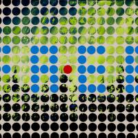 Bingo Borealis, huile sur toile, 46 x 60cm, 2007